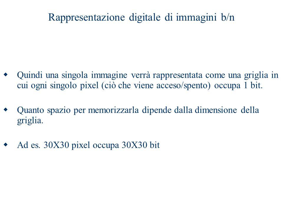 Rappresentazione digitale di immagini b/n  Quindi una singola immagine verrà rappresentata come una griglia in cui ogni singolo pixel (ciò che viene