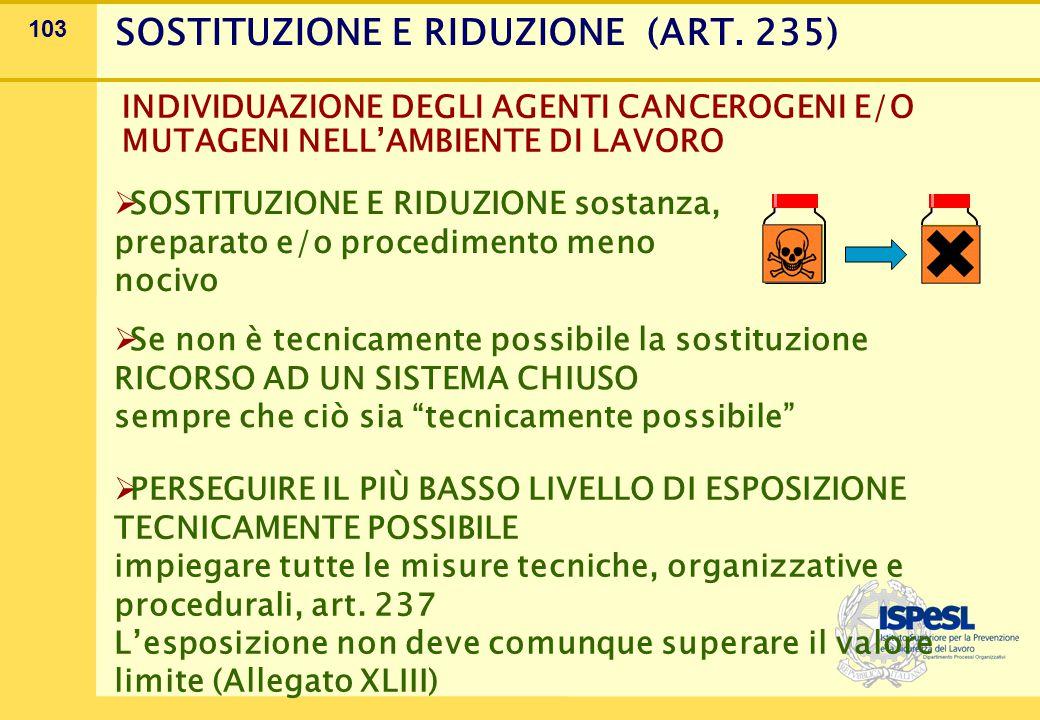 103 SOSTITUZIONE E RIDUZIONE (ART.