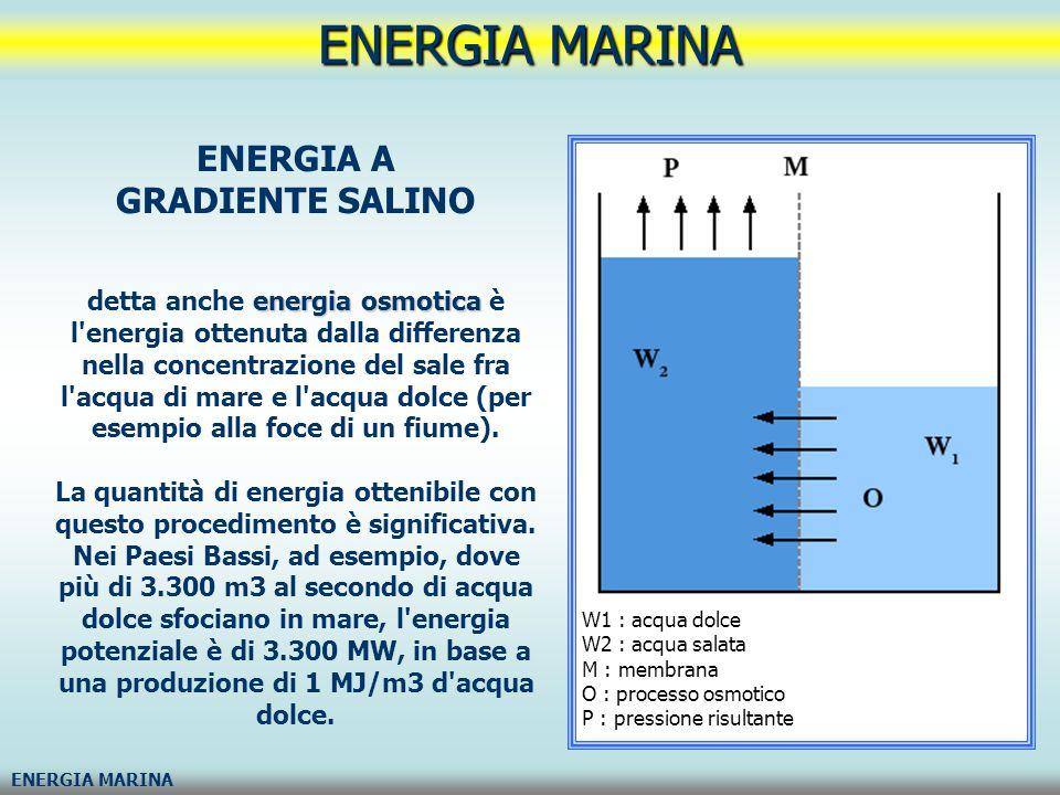ENERGIA MARINA ENERGIA A GRADIENTE SALINO energia osmotica detta anche energia osmotica è l'energia ottenuta dalla differenza nella concentrazione del
