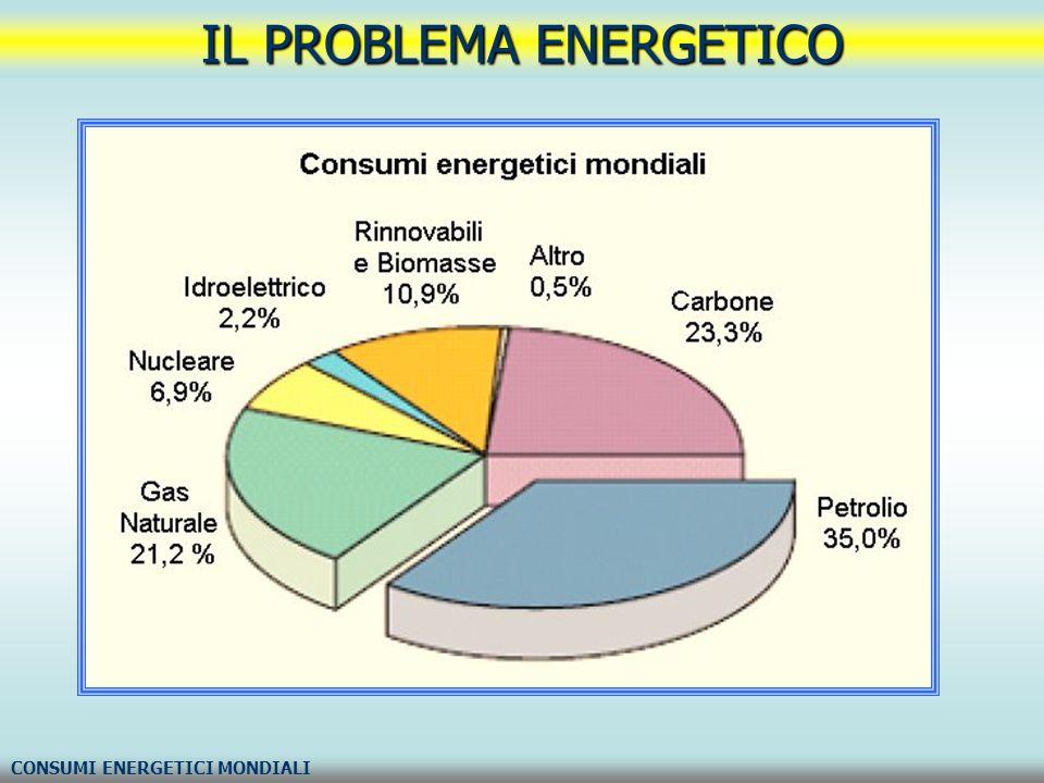 IL PROBLEMA ENERGETICO CONSUMI ENERGETICI MONDIALI
