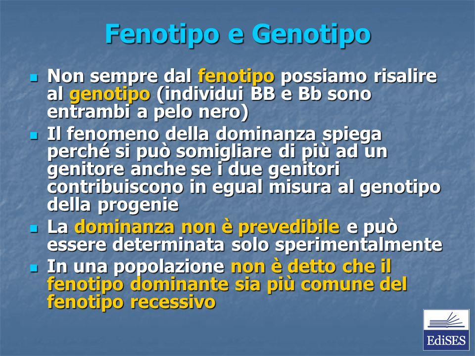 Fenotipo e Genotipo Non sempre dal fenotipo possiamo risalire al genotipo (individui BB e Bb sono entrambi a pelo nero) Non sempre dal fenotipo possia