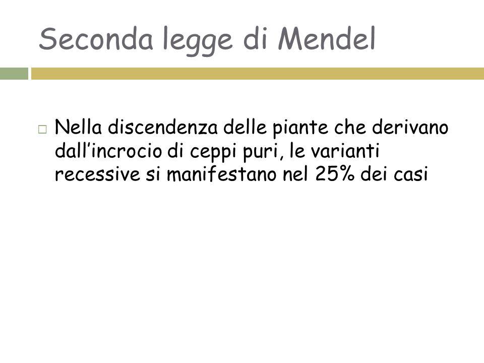 Seconda legge di Mendel  Nella discendenza delle piante che derivano dall'incrocio di ceppi puri, le varianti recessive si manifestano nel 25% dei ca