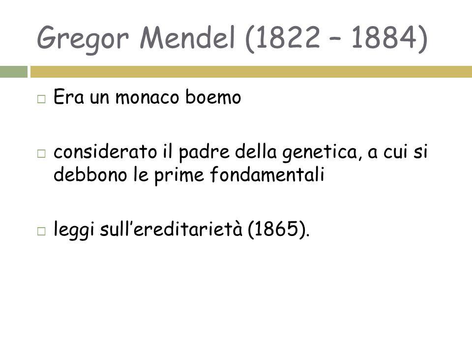 Gregor Mendel (1822 – 1884)  Era un monaco boemo  considerato il padre della genetica, a cui si debbono le prime fondamentali  leggi sull'ereditarietà (1865).