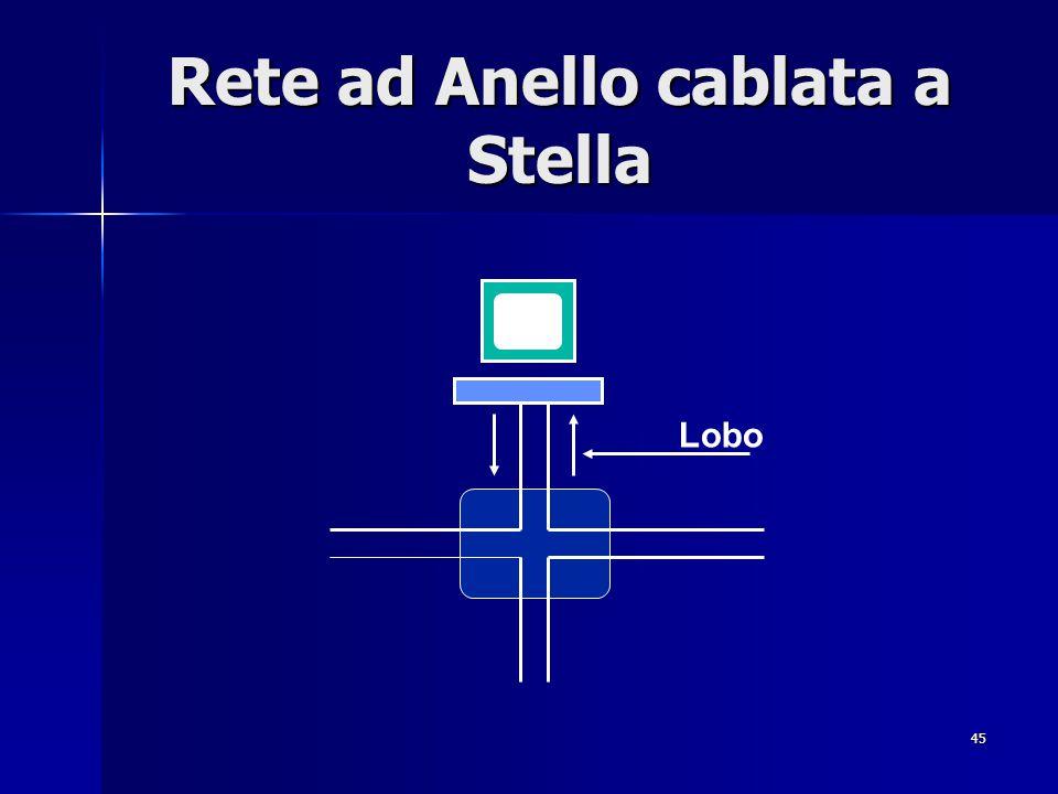 45 Rete ad Anello cablata a Stella Lobo