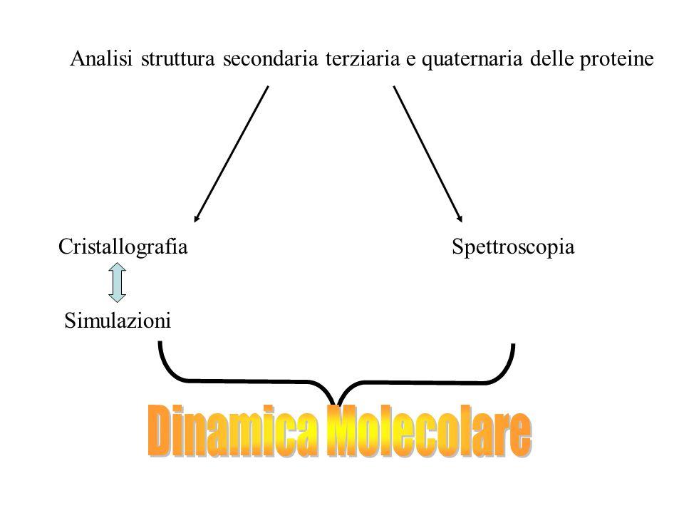 Analisi struttura secondaria terziaria e quaternaria delle proteine CristallografiaSpettroscopia Simulazioni