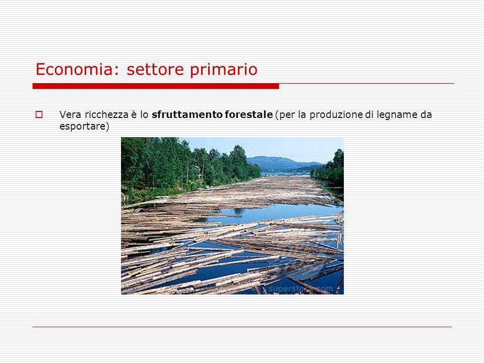 Economia: settore primario  Vera ricchezza è lo sfruttamento forestale (per la produzione di legname da esportare)