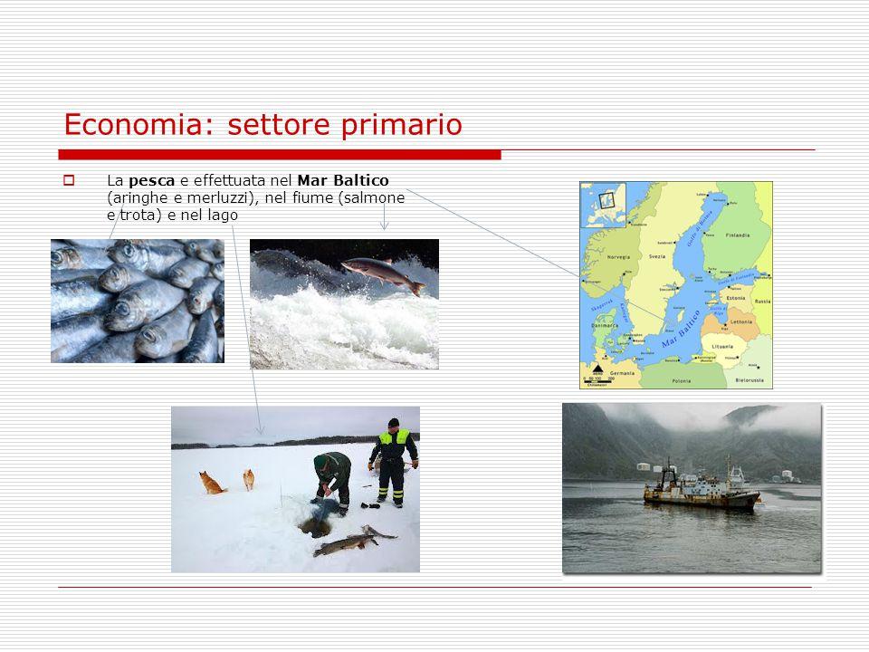Economia: settore primario  La pesca e effettuata nel Mar Baltico (aringhe e merluzzi), nel fiume (salmone e trota) e nel lago