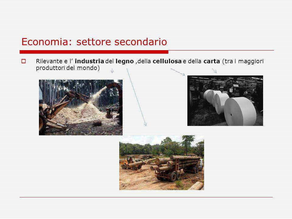 Economia: settore secondario  Rilevante e l' industria del legno,della cellulosa e della carta (tra i maggiori produttori del mondo)