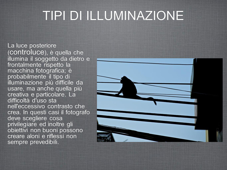 TIPI DI ILLUMINAZIONE La luce posteriore ( controluce ), è quella che illumina il soggetto da dietro e frontalmente rispetto la macchina fotografica;