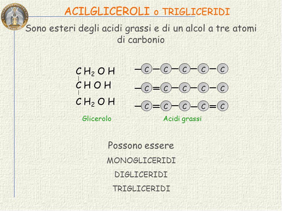 ACIDI GRASSI ESSENZIALI Sono definiti acidi grassi essenziali perché indispensabili nella dieta dei mammiferi poichè non possono essere sintetizzati d