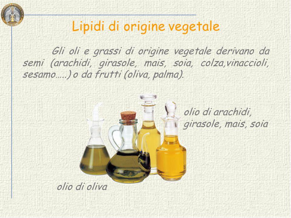 Lipidi di origine animale nelle uova nel pesce Gli oli e grassi di origine animale sono contenuti nei tessuti di diversi animali, nel pesce, nel latte