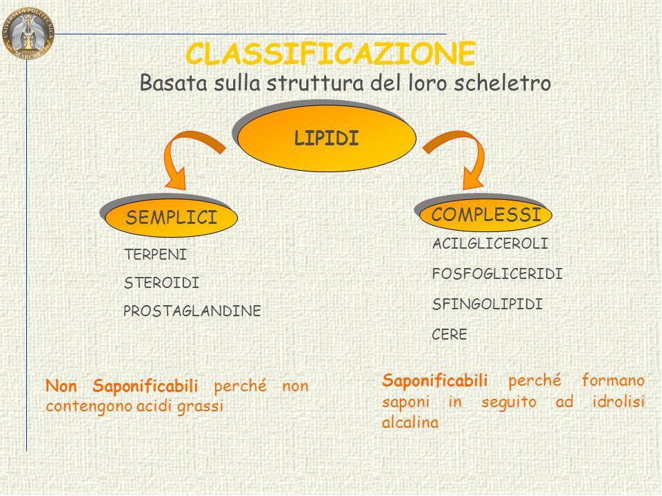 CLASSIFICAZIONE LIPIDI Basata sulla struttura del loro scheletro SEMPLICI COMPLESSI TERPENI STEROIDI PROSTAGLANDINE ACILGLICEROLI FOSFOGLICERIDI SFINGOLIPIDI CERE Saponificabili perché formano saponi in seguito ad idrolisi alcalina Non Saponificabili perché non contengono acidi grassi