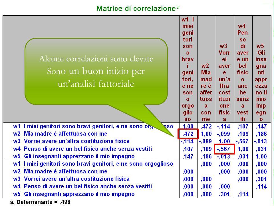 Alcune correlazioni sono elevate Son o un buon inizio per un'analisi fattoriale