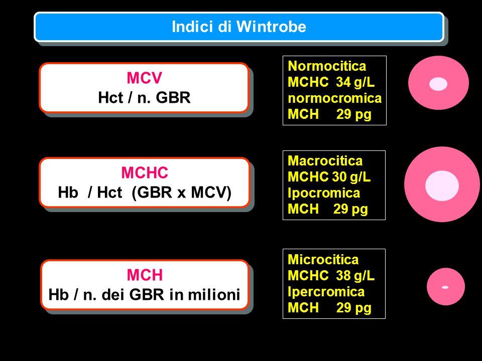 MCV Hct / n. GBR MCV Hct / n. GBR MCH Hb / n. dei GBR in milioni MCH Hb / n. dei GBR in milioni MCHC Hb / Hct (GBR x MCV) MCHC Hb / Hct (GBR x MCV) No