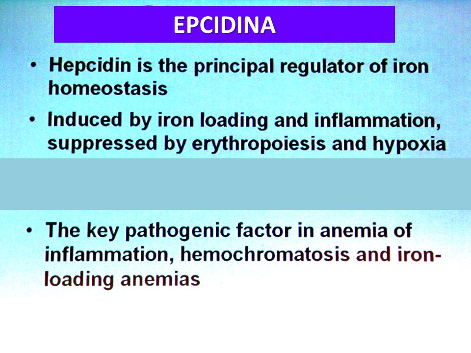 Regulation of Hepcidin synthesis by inflammation Interleukin-6 Hepcidin iron anemia of chronic disease