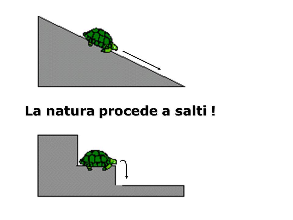 La natura procede a salti !