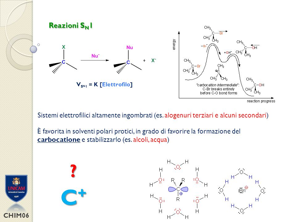 CHIM06 Reazioni S N 1