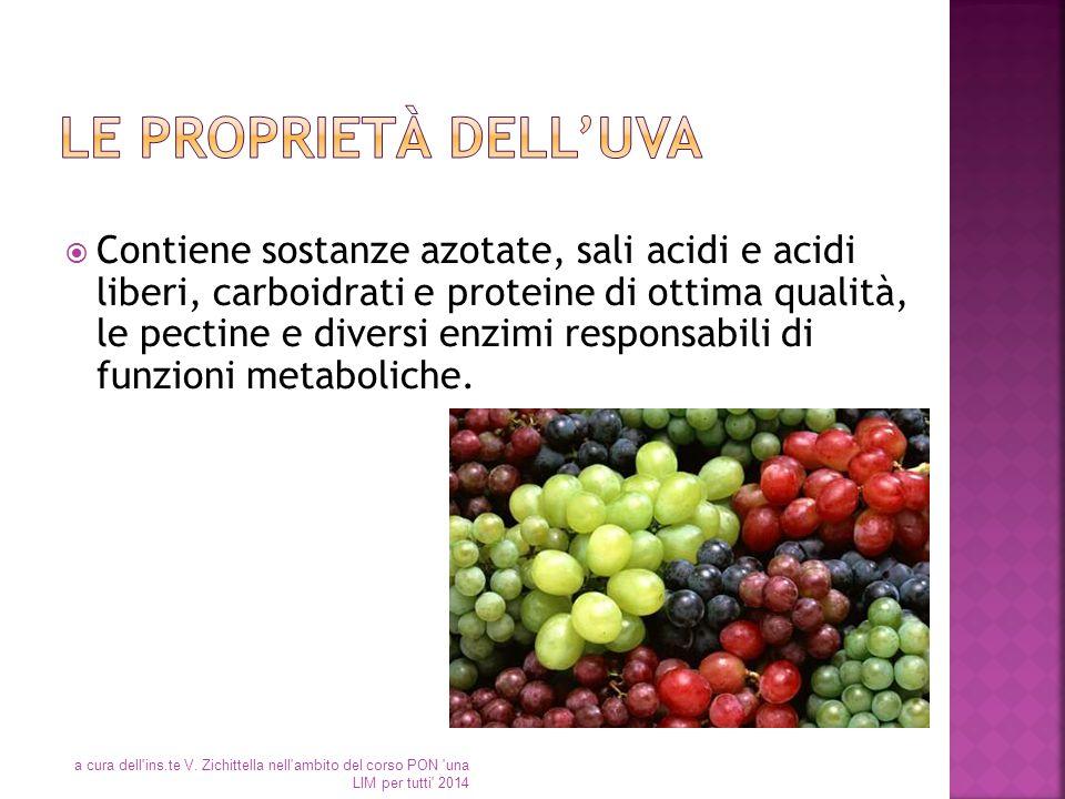  Contiene sostanze azotate, sali acidi e acidi liberi, carboidrati e proteine di ottima qualità, le pectine e diversi enzimi responsabili di funzioni