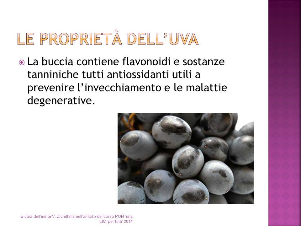  La buccia contiene flavonoidi e sostanze tanniniche tutti antiossidanti utili a prevenire l'invecchiamento e le malattie degenerative. a cura dell'i