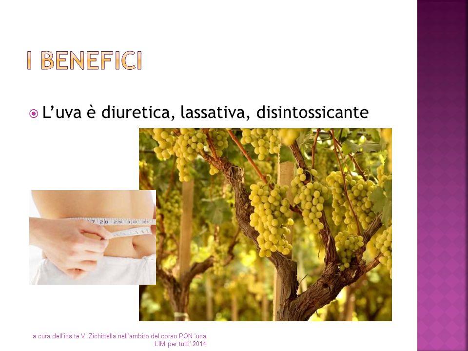  L'uva è diuretica, lassativa, disintossicante a cura dell'ins.te V. Zichittella nell'ambito del corso PON 'una LIM per tutti' 2014