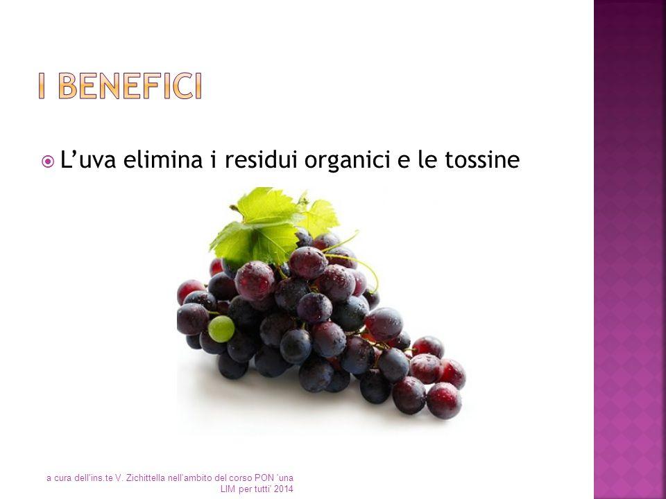  L'uva elimina i residui organici e le tossine a cura dell'ins.te V. Zichittella nell'ambito del corso PON 'una LIM per tutti' 2014
