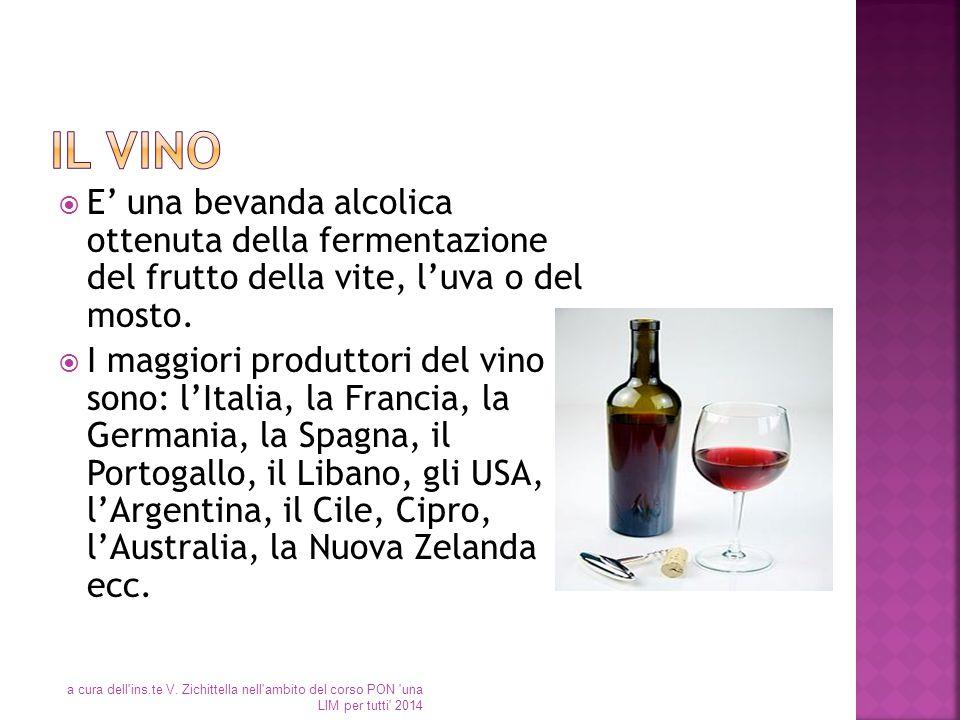  E' una bevanda alcolica ottenuta della fermentazione del frutto della vite, l'uva o del mosto.  I maggiori produttori del vino sono: l'Italia, la F