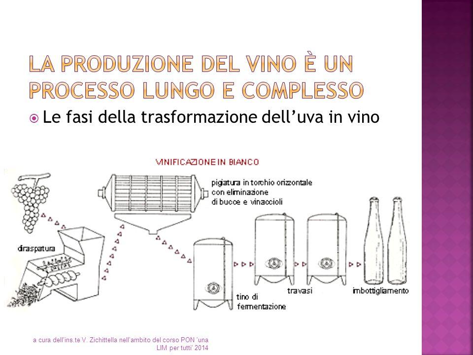  Le fasi della trasformazione dell'uva in vino a cura dell'ins.te V. Zichittella nell'ambito del corso PON 'una LIM per tutti' 2014