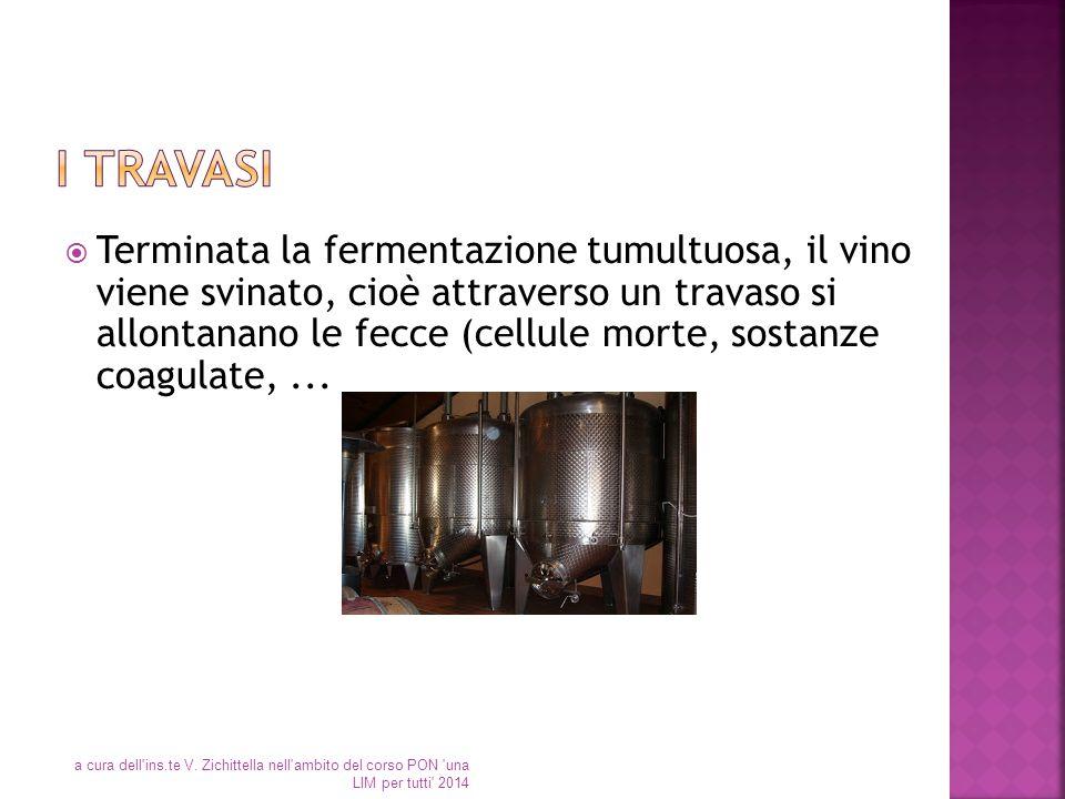  Terminata la fermentazione tumultuosa, il vino viene svinato, cioè attraverso un travaso si allontanano le fecce (cellule morte, sostanze coagulate,