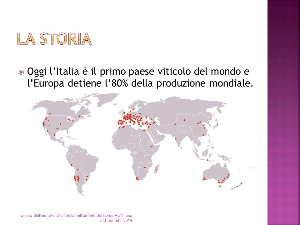  Oggi l'Italia è il primo paese viticolo del mondo e l'Europa detiene l'80% della produzione mondiale. a cura dell'ins.te V. Zichittella nell'ambito