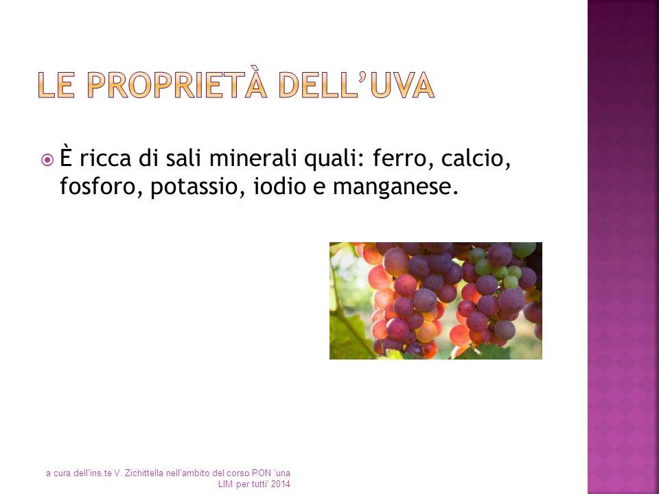  È ricca di sali minerali quali: ferro, calcio, fosforo, potassio, iodio e manganese. a cura dell'ins.te V. Zichittella nell'ambito del corso PON 'un
