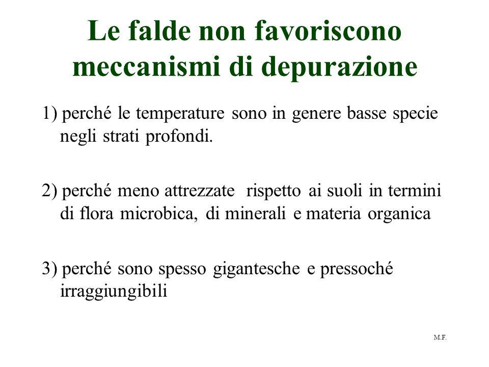 M.F. Le falde non favoriscono meccanismi di depurazione 1) perché le temperature sono in genere basse specie negli strati profondi. 2) perché meno att