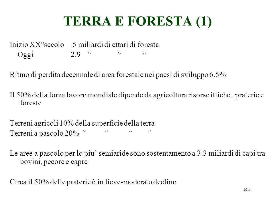 """M.F. TERRA E FORESTA (1) Inizio XX°secolo 5 miliardi di ettari di foresta Oggi 2.9 """" """" """" Ritmo di perdita decennale di area forestale nei paesi di svi"""