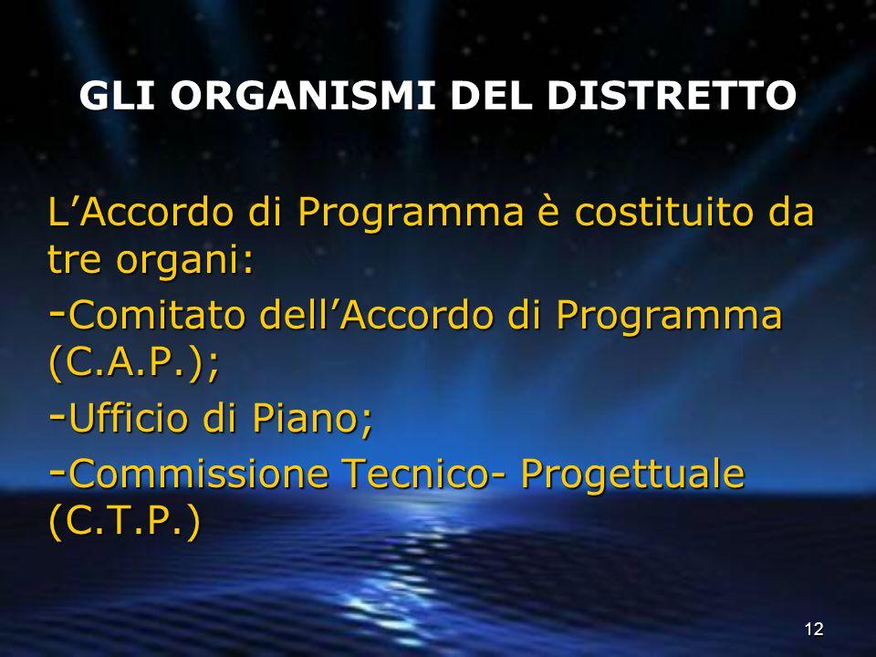 12 GLI ORGANISMI DEL DISTRETTO L'Accordo di Programma è costituito da tre organi: - Comitato dell'Accordo di Programma (C.A.P.); - Ufficio di Piano; -