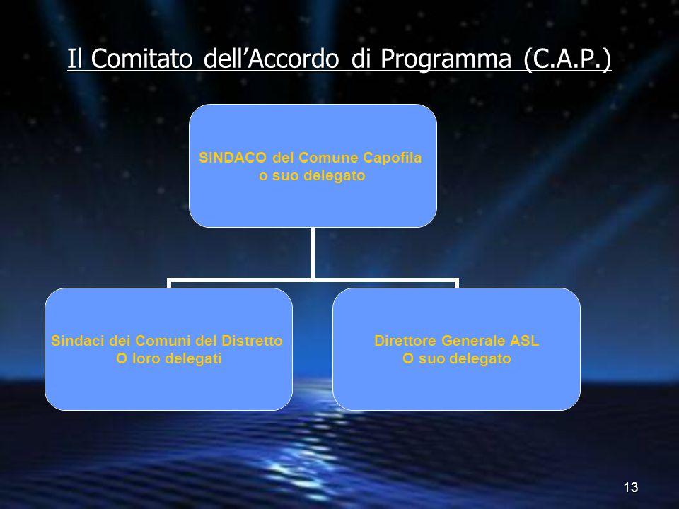 13 Il Comitato dell'Accordo di Programma (C.A.P.) SINDACO del Comune Capofila o suo delegato Sindaci dei Comuni del Distretto O loro delegati Direttor