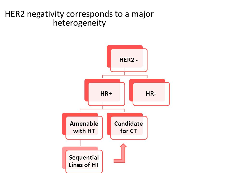 HER2 negativity corresponds to a major heterogeneity