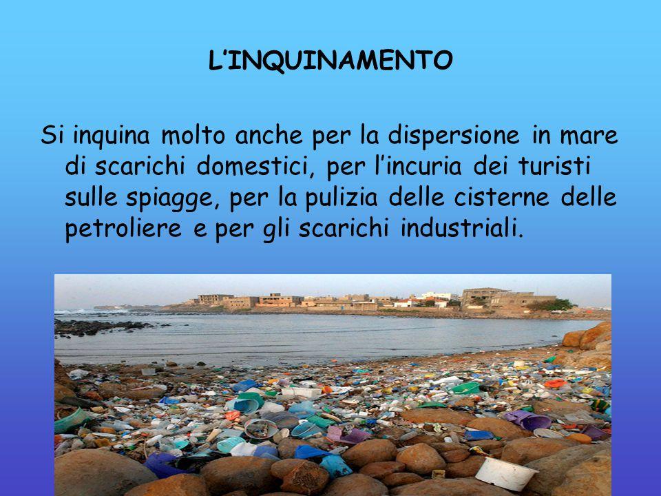 L'INQUINAMENTO Si inquina molto anche per la dispersione in mare di scarichi domestici, per l'incuria dei turisti sulle spiagge, per la pulizia delle cisterne delle petroliere e per gli scarichi industriali.