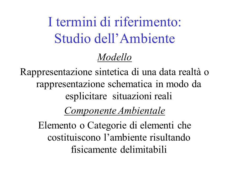 I termini di riferimento: Studio dell'Ambiente Modello Rappresentazione sintetica di una data realtà o rappresentazione schematica in modo da esplicit