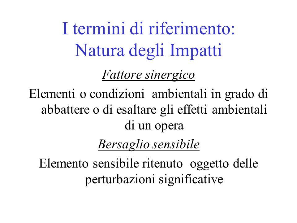 I termini di riferimento: Natura degli Impatti Fattore sinergico Elementi o condizioni ambientali in grado di abbattere o di esaltare gli effetti ambi