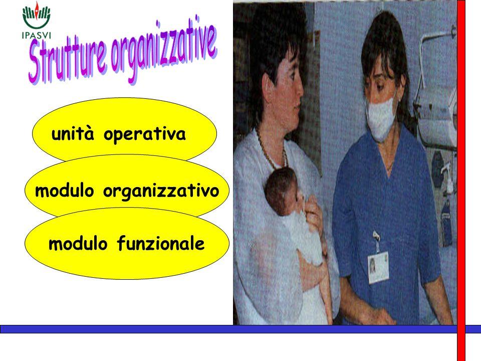 unità operativa modulo organizzativo modulo funzionale