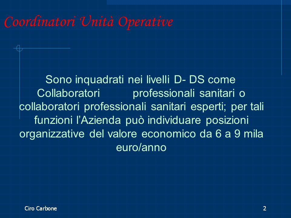 Coordinatori Unità Operative Sono inquadrati nei livelli D- DS come Collaboratori professionali sanitari o collaboratori professionali sanitari espert