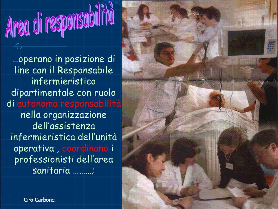…operano in posizione di line con il Responsabile infermieristico dipartimentale con ruolo di autonoma responsabilità nella organizzazione dell'assist