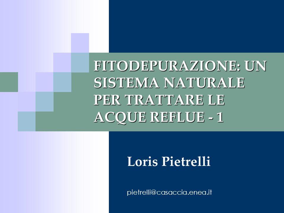 FITODEPURAZIONE: UN SISTEMA NATURALE PER TRATTARE LE ACQUE REFLUE - 1 Loris Pietrelli pietrelli@casaccia.enea.it