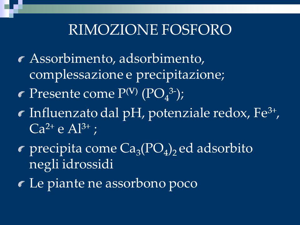 RIMOZIONE FOSFORO Assorbimento, adsorbimento, complessazione e precipitazione; Presente come P (V) (PO 4 3- ); Influenzato dal pH, potenziale redox, F