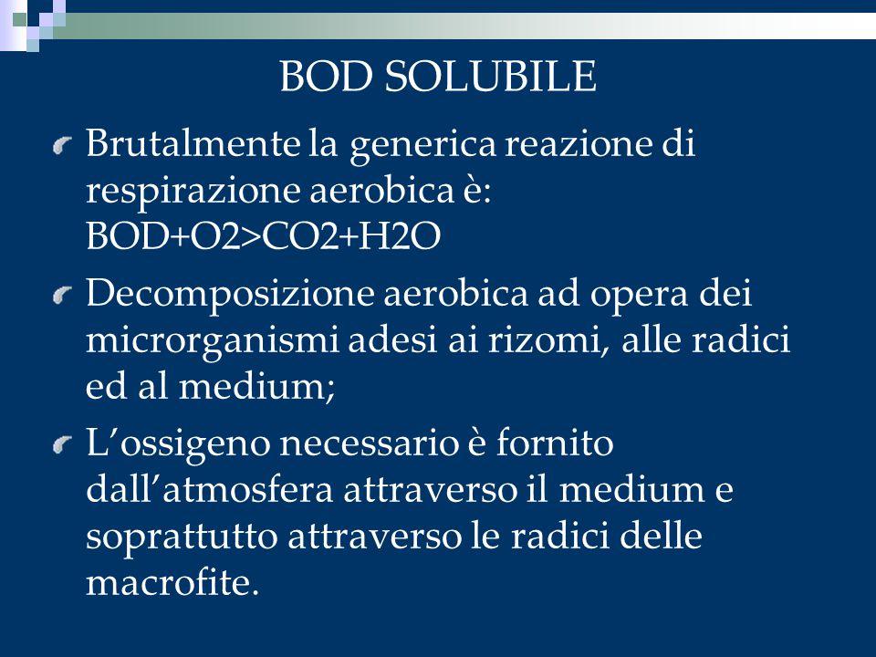 BOD SOLUBILE Brutalmente la generica reazione di respirazione aerobica è: BOD+O2>CO2+H2O Decomposizione aerobica ad opera dei microrganismi adesi ai r