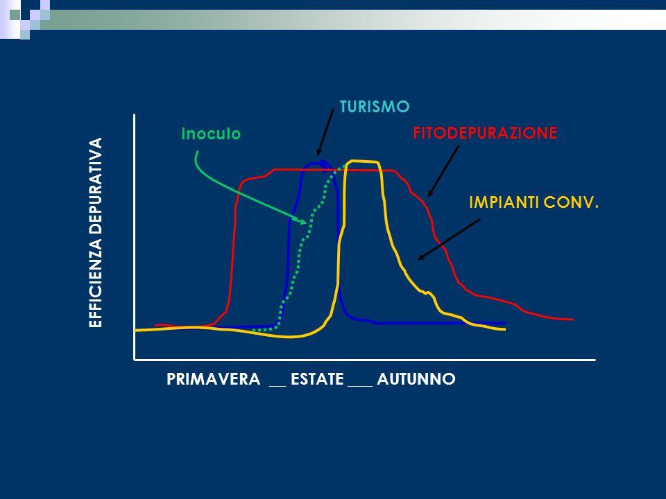 PRIMAVERA __ ESTATE ___ AUTUNNO TURISMO EFFICIENZA DEPURATIVA FITODEPURAZIONE IMPIANTI CONV. inoculo