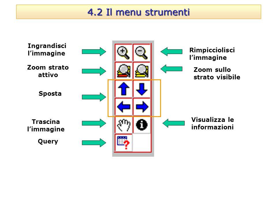 4.2 Il menu strumenti Ingrandisci l'immagine Zoom strato attivo Trascina l'immagine Query Rimpicciolisci l'immagine Zoom sullo strato visibile Visuali