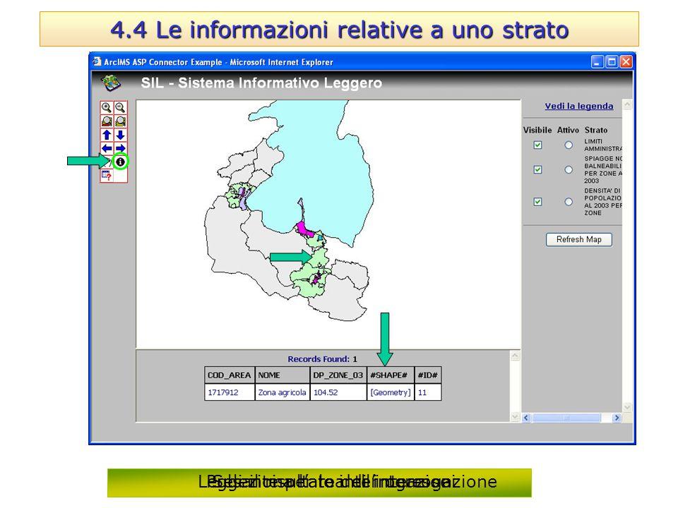 4.4 Le informazioni relative a uno strato Pulsante per le interrogazioni Seleziona l'area di interesse Leggi il risultato dell'interrogazione
