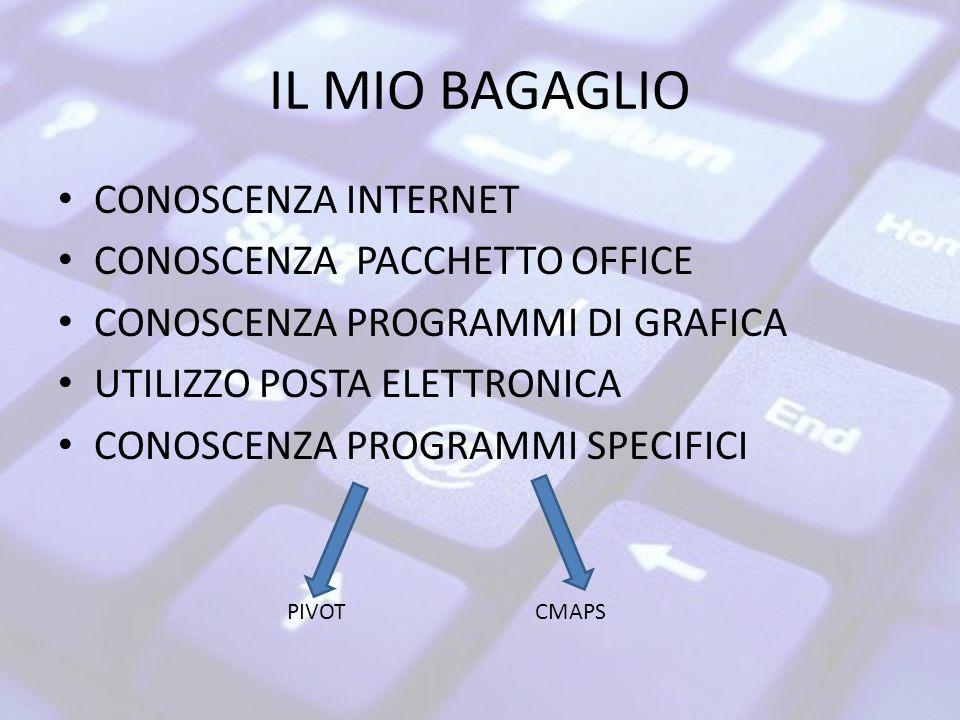 IL MIO BAGAGLIO CONOSCENZA INTERNET CONOSCENZA PACCHETTO OFFICE CONOSCENZA PROGRAMMI DI GRAFICA UTILIZZO POSTA ELETTRONICA CONOSCENZA PROGRAMMI SPECIFICI PIVOTCMAPS