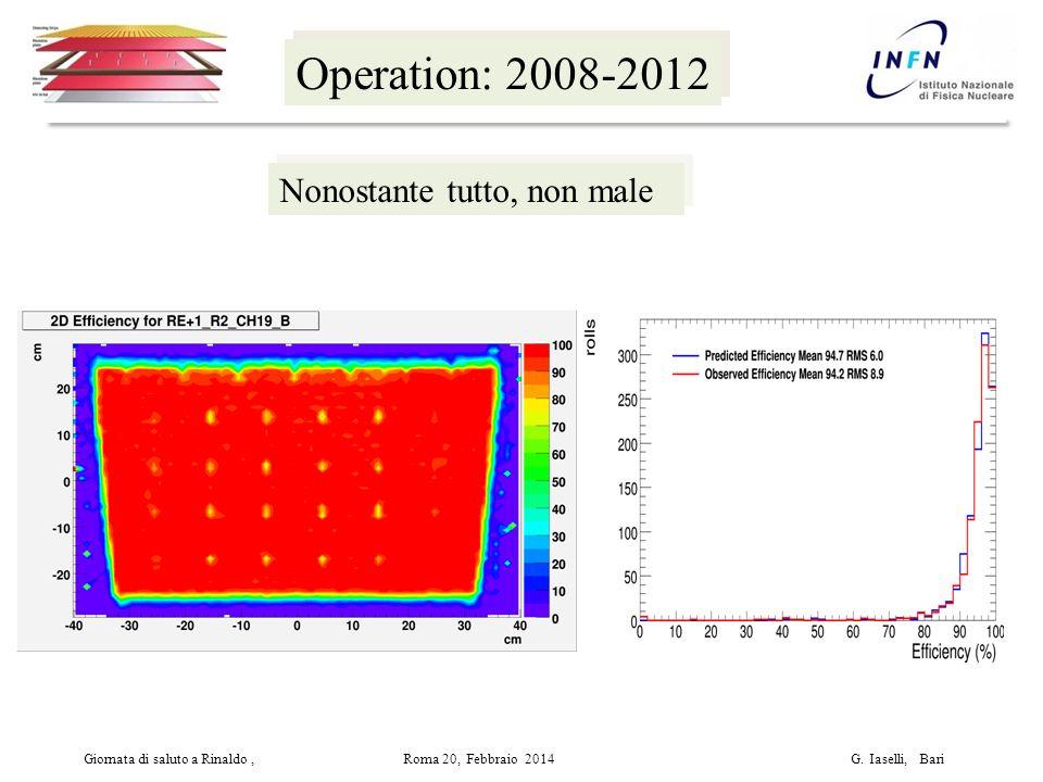 Operation: 2008-2012 Giornata di saluto a Rinaldo, Roma 20, Febbraio 2014 G.