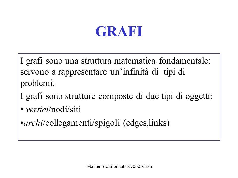 Master Bioinformatica 2002: Grafi GRAFI I grafi sono una struttura matematica fondamentale: servono a rappresentare un'infinità di tipi di problemi. I
